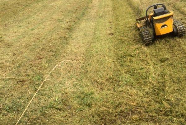 grootschalig-gras-laten-maaien